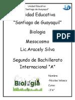 Informe-mesocosmo.docx