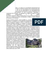 Civilización maya.docx