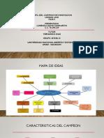 Perfil Del Campeon de Innovacion_lorenzo_sanmartin_pptx