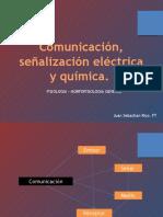 comunicacion electrica  p1