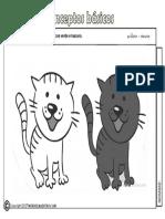 Actividades-claro-oscuro.pdf