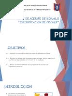 Presentacion Seminario Practica 10-1-1