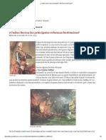 ¿Cuáles Fueron Las Principales Reformas Borbónicas