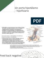 Circulación Porta Hipotálamo - Hipofisiario