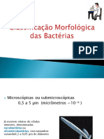 Classifica-o morfológicas das bactérias .pdf