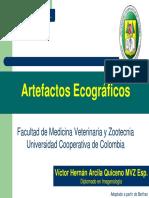 09_artefactos_ecograficos