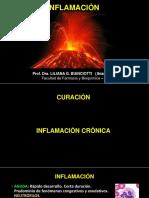 T-6+inflamacion++++++cr%c3%b3nica