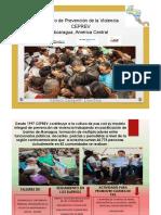 pp Monica Zalaquett.pdf