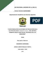 TESIS-JUNIOR-HIDALGO-corregido-14-08-16.docx
