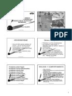 24Castillo_Valiente_PRODIPLOSIS.pdf