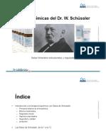 PLANTILLA PONENCIA SALES - GENERAL.pdf