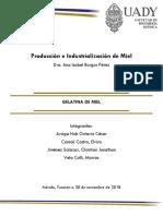 Producción e Industrialización de Miel