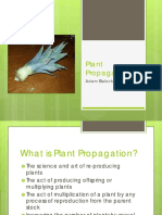 Plant Propagation by Adam.pdf