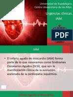 presentaciondeiam-170512041946