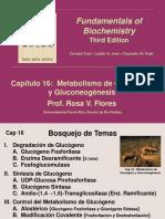 Cap 16_Metabolismo de Glucógeno y Gluconeogénesis