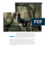 How to use thre brenizer method in pet photograpy.pdf
