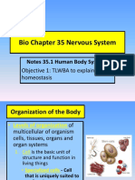 Bio_35_1_Human_body_systems.pptx