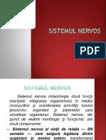SISTEMUL NERVOS.pptx