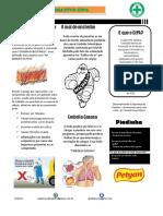 jornal (1) PDF(1)
