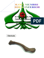 PDF TUTOR OSTEOLOGI MEMBRI SUPERIOR 2010.pdf