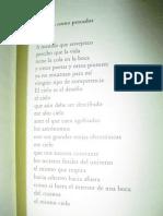 Ferlinghetti Lawrence - El Poeta Como Pescador