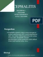 ENCEPHALITIS power point.pptx