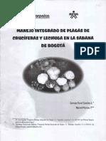 PLAGAS EN REPOLLO.pdf