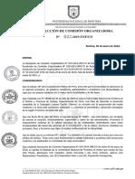 Designar a Los Miembros Del Comite Calificador Ecargado de Dirigir El Desarrollo y Ejecución 001-2019-UNF-CO (1)