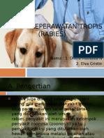 Asuhan keperawatan tropis (rabies) PPT.pptx