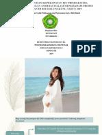Gambaran Asuhan Keperawatan Ibu Primigravida Trimester III