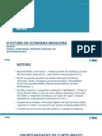 O futuro da economia brasileira Mar-19[9139].pdf