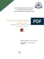 Proiect R.U. Stoica Georgiana-Claudia.docx