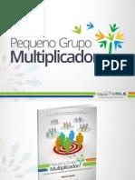 Ficha Relatório de Supervisão Do PGM