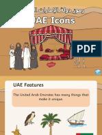 UAE ICONS (Features)