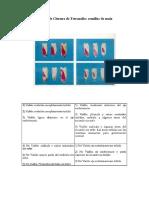 Prueba de Cloruro de Tetrazolio.pdf