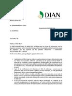 DIAN 2.0.docx