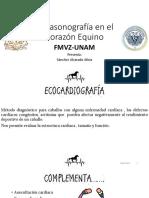 Ecocardiografía SAA.pptx