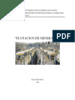 Apunte_Flotacion_2008.pdf
