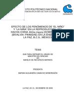 camachom1.pdf