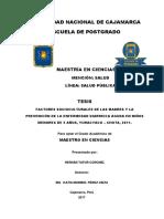 TESIS MAESTRIA HERNAN TAFUR CORONEL.pdf