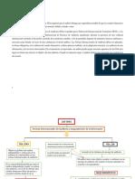LAS NIAS MAPAS CONCEPTUAL - para combinar.docx