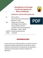 Universidad San Luis Gonzaga.docx