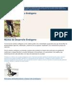 Núcleos de Desarrollo Endógeno.docx