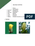 BIOLOGI Klasifikasi BUNGA