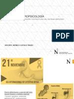 Sesion 1 Neuropsicología Upn 2019
