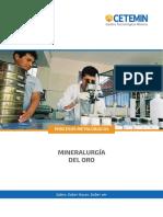 MINERALURGIA ORO - TPM.pdf