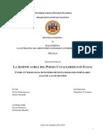 tesi D. D'Arienzo.pdf