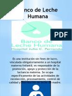 Banco de Leche Humana