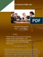 tugas-organisasi-nirlaba1