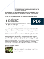 plants and phototoxicity